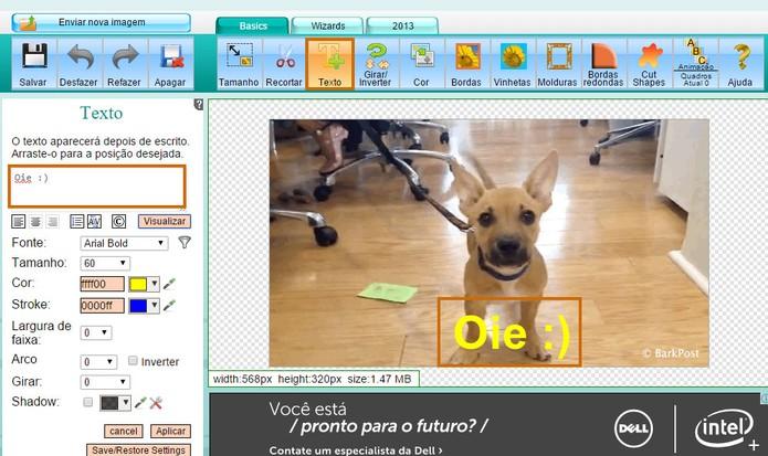 Inicie a adição do texto no GIF animado (Foto: Reprodução/Barbara Mannara)