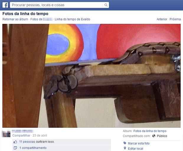 Imagens da cobra na sala de aula foram publicadas na rede social (Foto: Reprodução/Facebook)