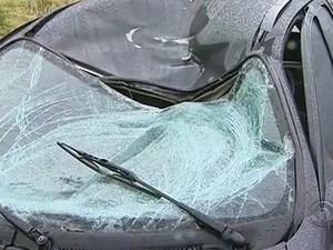 Ciclista morreu após ser atropelado na SC-401  (Foto: Reprodução/RBS TV)