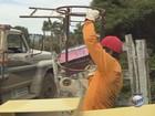 Serviços de 'cata-treco' recolhem entulhos em cidades do Sul de MG