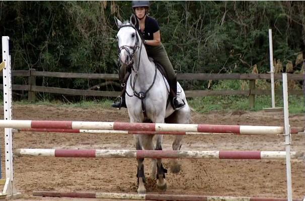 Revista reprisou o programa especial sobre cavalos (Foto: Rio Sul Revista)