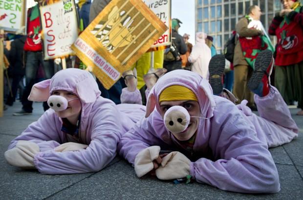 Dupla com fantasia de porcos protesta em Berlim contra políticas de agricultura do governo alemão (Foto: Daniel Naupold, DPA/AFP)