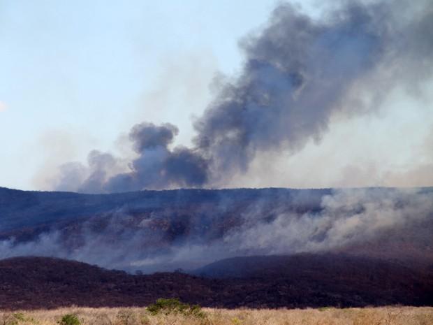 Incêndio atinge o município de Cordeiros, na divisa com Minas Gerais (Foto: Vanderlei Santos/Cordeiros em Foco)