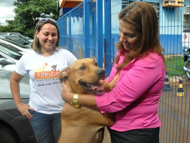 Cão Scooby saindo do CCZ com membros do Abrigo dos Bichos após liminar em Campo Grande MS (Foto: Fernando da Mata/G1 MS)