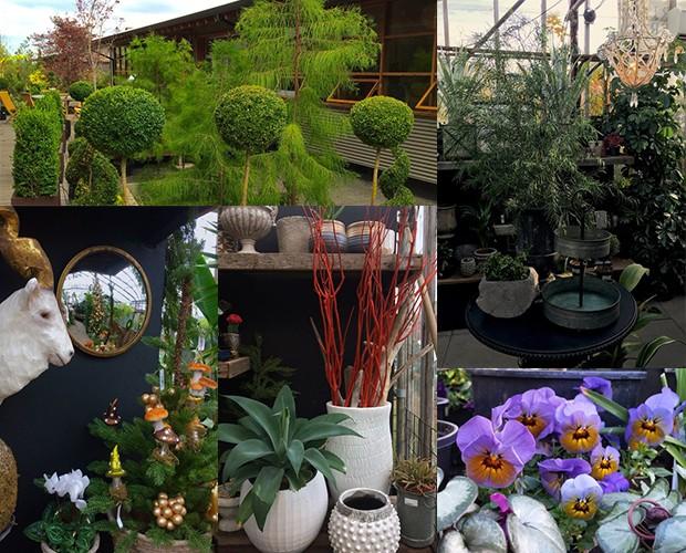 Conheça As Floriculturas Inspiradoras De Portland Casa E Jardim