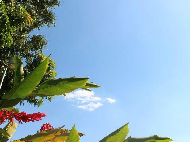 Céu de Campo Grande na tarde deste domingo (30) (Foto: Isabela Cavalcante/ G1 MS)
