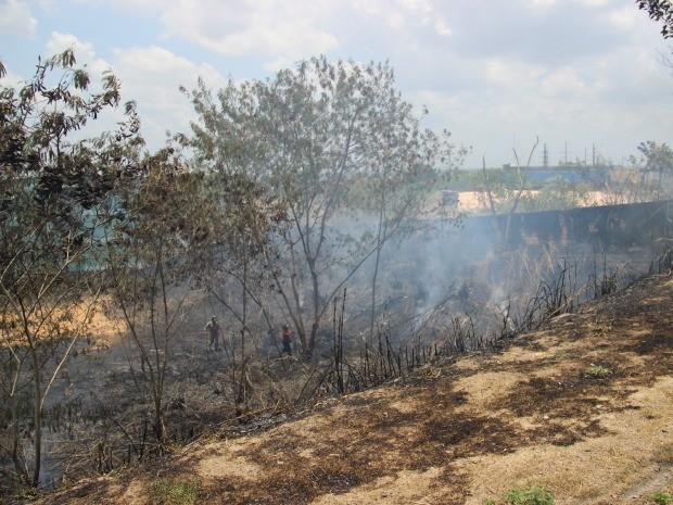 Incêndio teve início por volta das 11h nas proximidades de condomínio fechado (Foto: Camila Henriques/G1 AM)