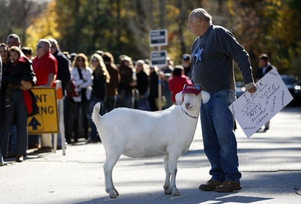 Animal usava boné com broches da campanha democrata (Foto: Reuters)