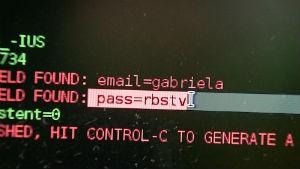 Repórter acompanha teste de segurança na internet (Foto: Reprodução/RBS TV)