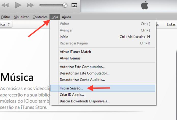 Iniciando uma sessão no iTunes com uma ID da Apple (Foto: Reprodução/Marvin Costa)