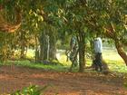 Polícia Ambiental deflagra operação de combate à caça ilegal no Paraná