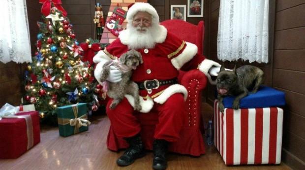 No Ilha Plaza, Bart e Malu posam com o Papai Noel  (Foto: Divulgação)