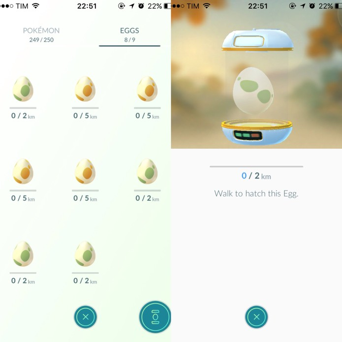 Ovos recebem nova dinâmica de cores em Pokémon Go (Foto: Reprodução/Felipe Vinha)