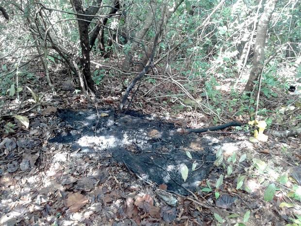 Mulher foi amarrada numa árvore numa região de mata fechada. Chamas atingiram as penas da vítima, que foi socorrida em estado de choque para o hospital (Foto: Gilmar Santos/Inter TV Cabugi)