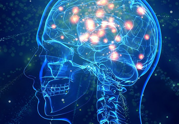 Cérebro ; ciência ;  (Foto: Thinkstock)