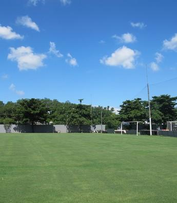Gramado do CT Rei Pelé (Foto: Marcelo Hazan / Globoesporte.com)