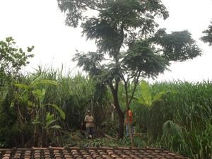 Homens trabalha no fundo do barranco para conter a situação. (Foto: Patrícia Belo/G1)