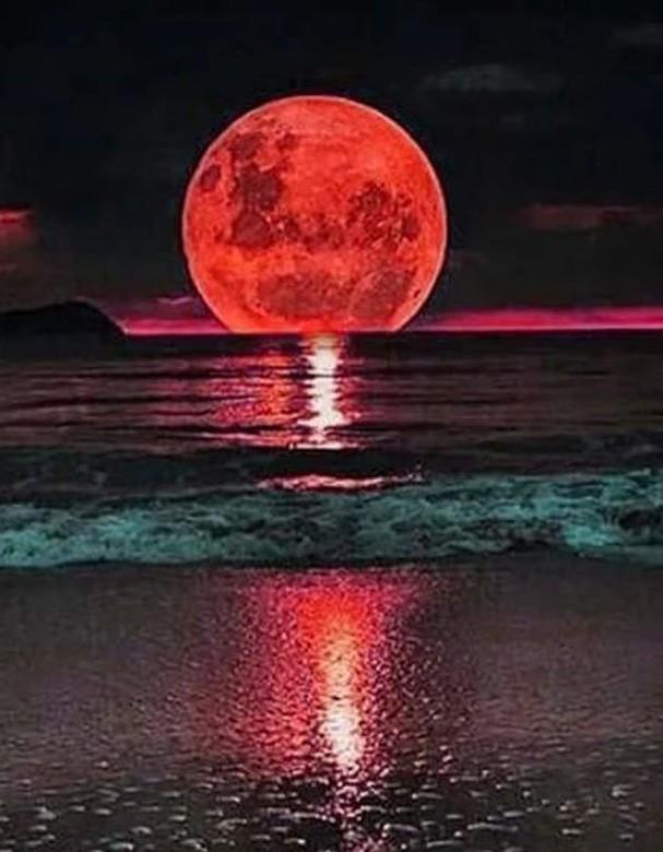 Lua cheia em aquário (Foto: Pinterest)