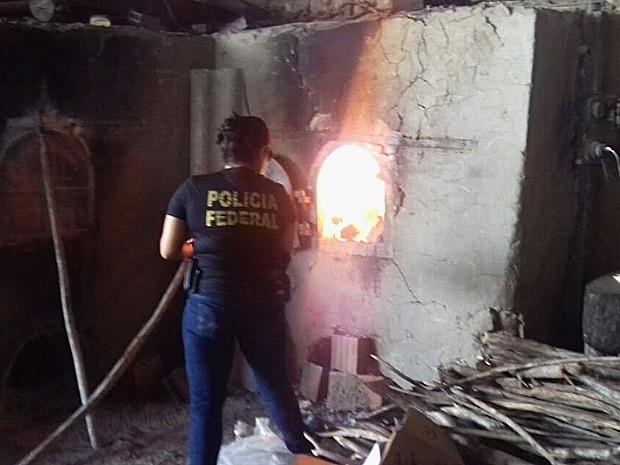 As substâncias foram apreendidas durante operações da Polícia Federal (Foto: Polícia Federal)