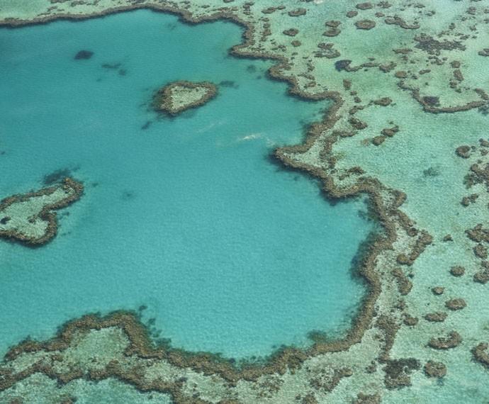A Grande Barreira de Corais (Foto: Divulgação)