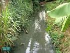 Esgoto sem tratamento é despejado no Rio Doce em Colatina, ES