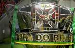 Veja o caminho da Raposa na Copa do Brasil (Alexandre Vidal / Fla Imagem)