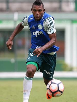 Borja Palmeiras (Foto: Cesar Greco/Ag. Palmeiras/Divulgação)