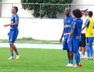 Fábio Ferreira e Andrezinho no treino do Botafogo (Foto: André Casado / Globoesporte.com)