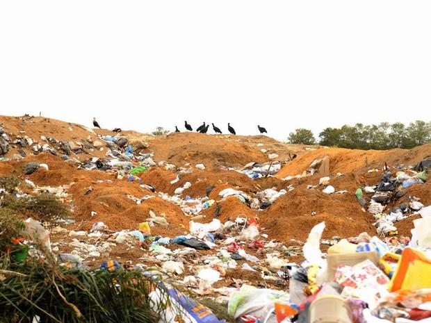 Lixão às margens de córrego causa poluição ao Rio Corumbataí, em Charqueada (Foto: José Longatto/Arquivo pessoal)