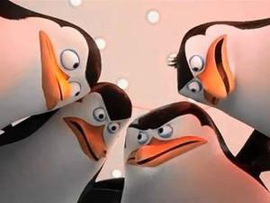 Filme 'Os Pinguins de Madagascar' (Foto: Divulgação)