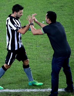 Jair fala com Pimpão após o gol do Botafogo (Foto: Satiro Sodré/SSPress/Botafogo)