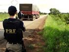 PRF registrou duas mortes e três presos por embriaguez, em RO