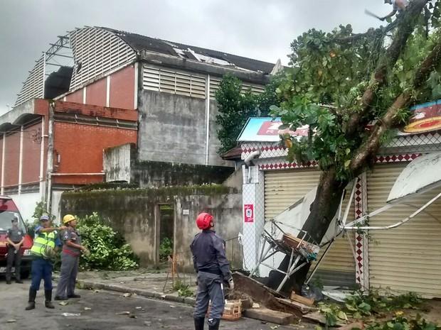 Forte temporal causou diversos transtornos na Baixada Santista (Foto: Cláudio Ferreira/Arquivo Pessoal)