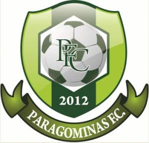 Escudo do Paragominas Futebol Clube (Foto: Divulgação)