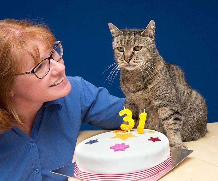 O gato mais velho do mundo acaba de fazer 31 anos