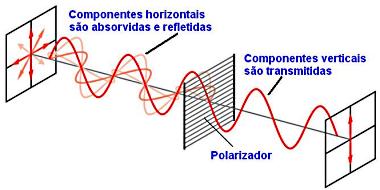 Figura 12 (Foto: Colégio Qi)