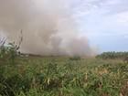 Incêndio atinge área de proteção ambiental na Zona Norte de Macapá
