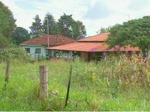Assentamento em Motuca onde morava mulher que morreu com suspeita de hantavirose (Foto: Reprodução/EPTV)