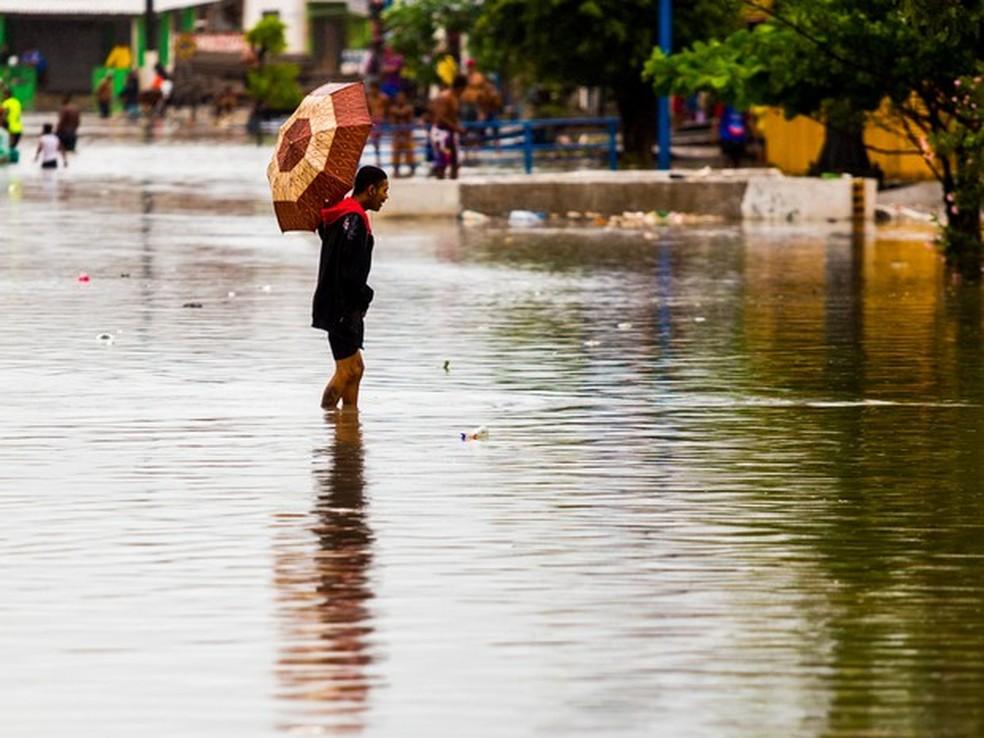 Risco de leptospirose aumenta no período chuvoso (Foto: Jonathan Lins/G1)