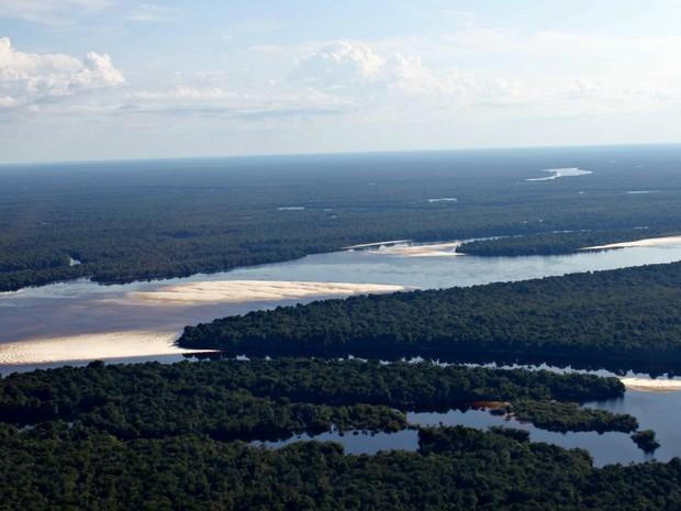 Área de São Gabriel da Cachoeira no Amazonas (Foto: Adneison Severiano G1/AM)