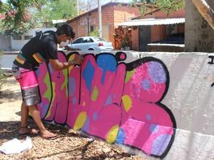 Grafitagem em muretas (Foto: Juliana Barros/G1)