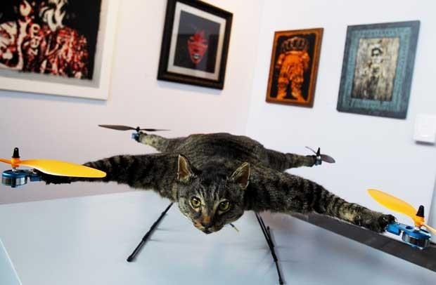 'Gato helicóptero' é uma obra do artista Bert Jansen. (Foto: Ade Johnson/ANP/AFP)