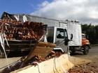 Acidente entre caminhões atrapalha o trânsito em rodovia de Barra Bonita