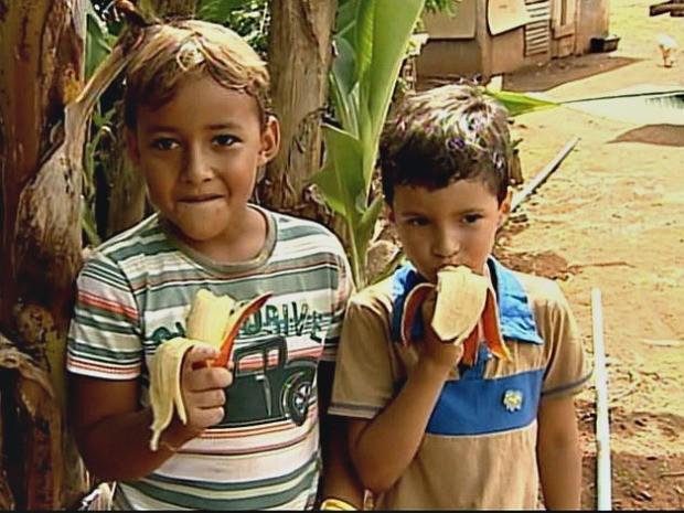 Família de pomeranos cultivam a 'banana preta' no Espírito Santo (Foto: Reprodução/TV Gazeta Noroeste)