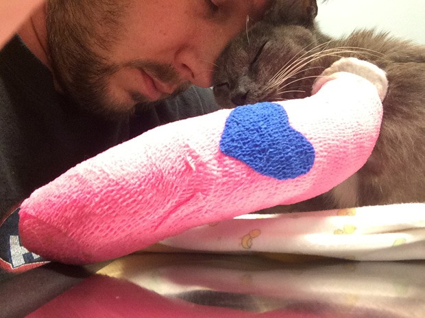 Gata Laurel aparece ao lado de Wayne Leinen, que faz parte da ONG 'Animal Refuge Center', que resgatou o animal (Foto: Animal Refuge Center/Divulgação)
