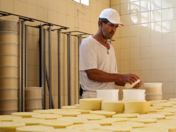 Seu Renê empilha queijos em laticínio que produz há 35 anos o parmesão de Alagoa (Foto: Samantha Silva / G1)