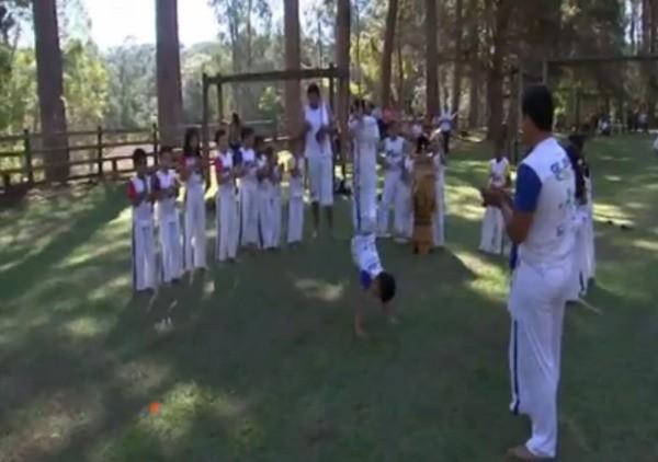 Grupo de capoeiristas pratica o esporte no Horto Florestal (Foto: Reprodução TV TEM)