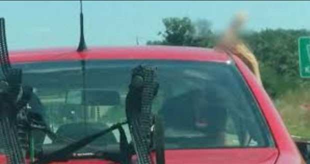 Jovem é preso por exibir pênis de borracha para motoristas nos EUA
