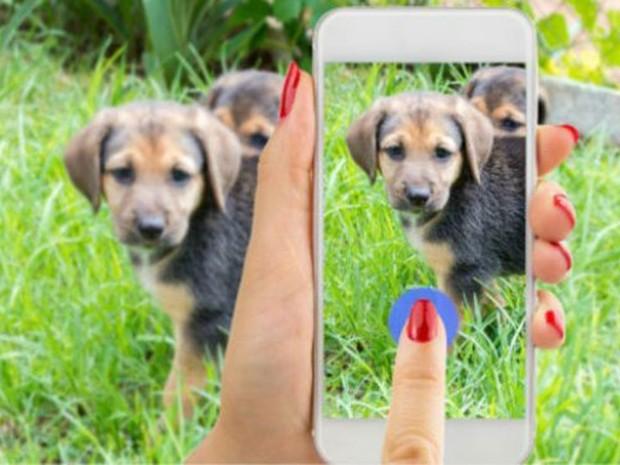 Segundo o Facebook, transmissões ao vivo recebem mais comentários do que vídeos normais (Foto: iStock)