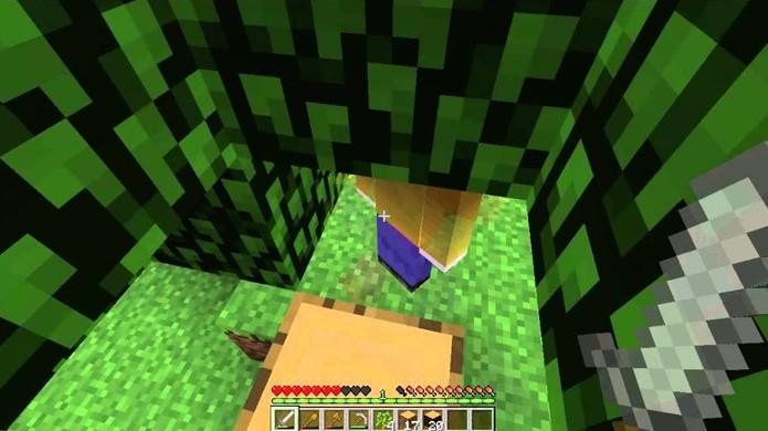 Em uma das suas primeiras imagens o Lick parecia apenas um jogador comum em Minecraft (Foto: Reprodução/YouTube)